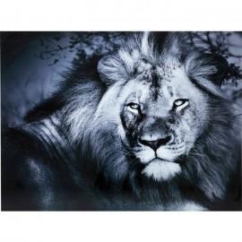 Obraz na szkle Lew 120x160cm
